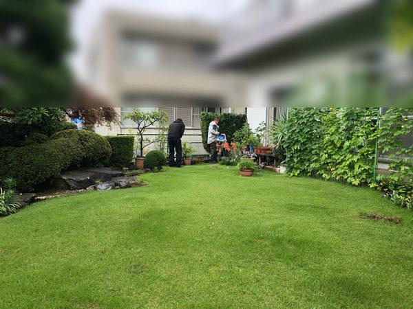 庭真ん中マサド1-1