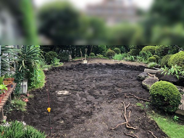 庭真ん中マサド2-1